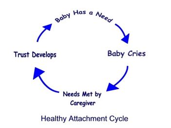 Image27 attachment cycle