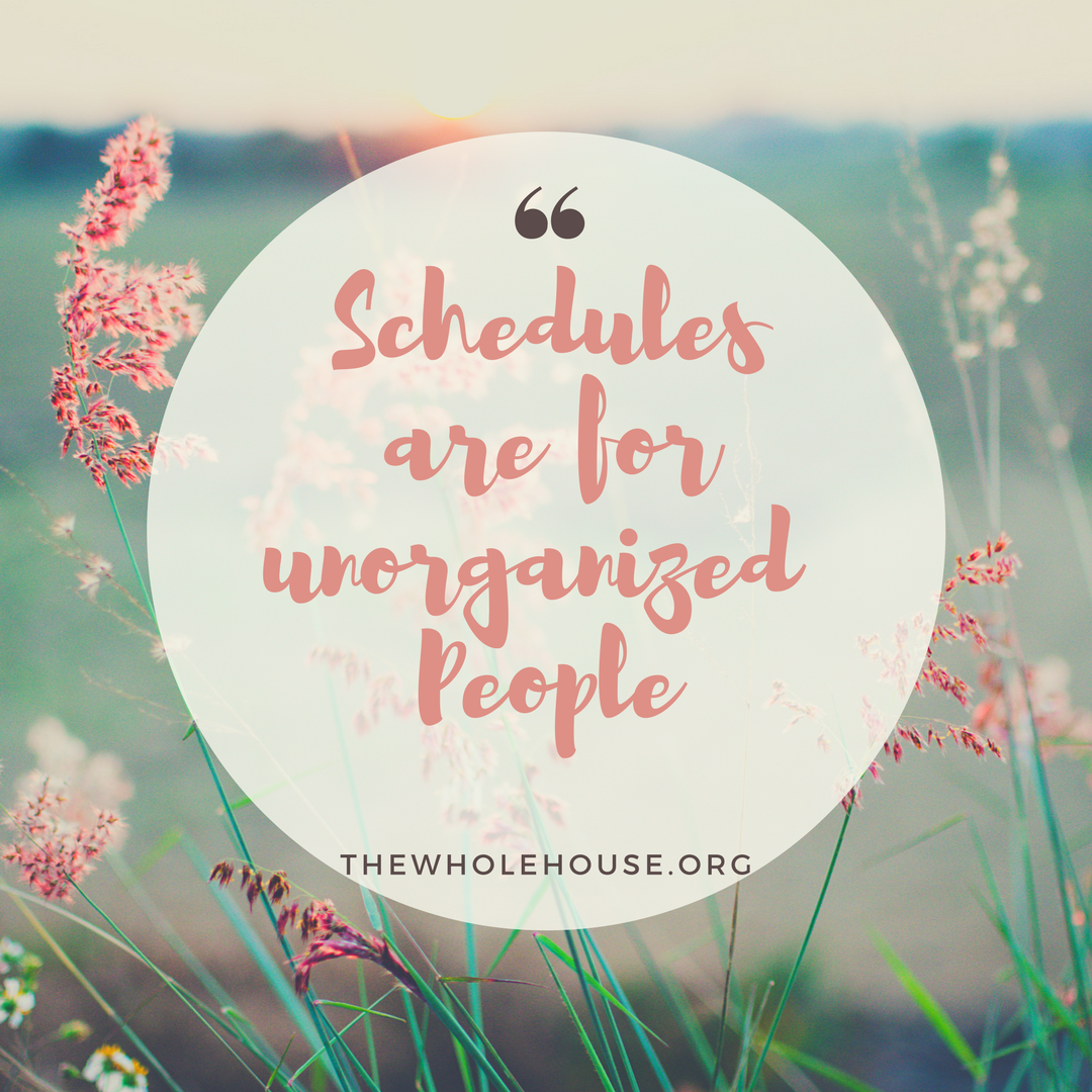Schedules are for unorganized People