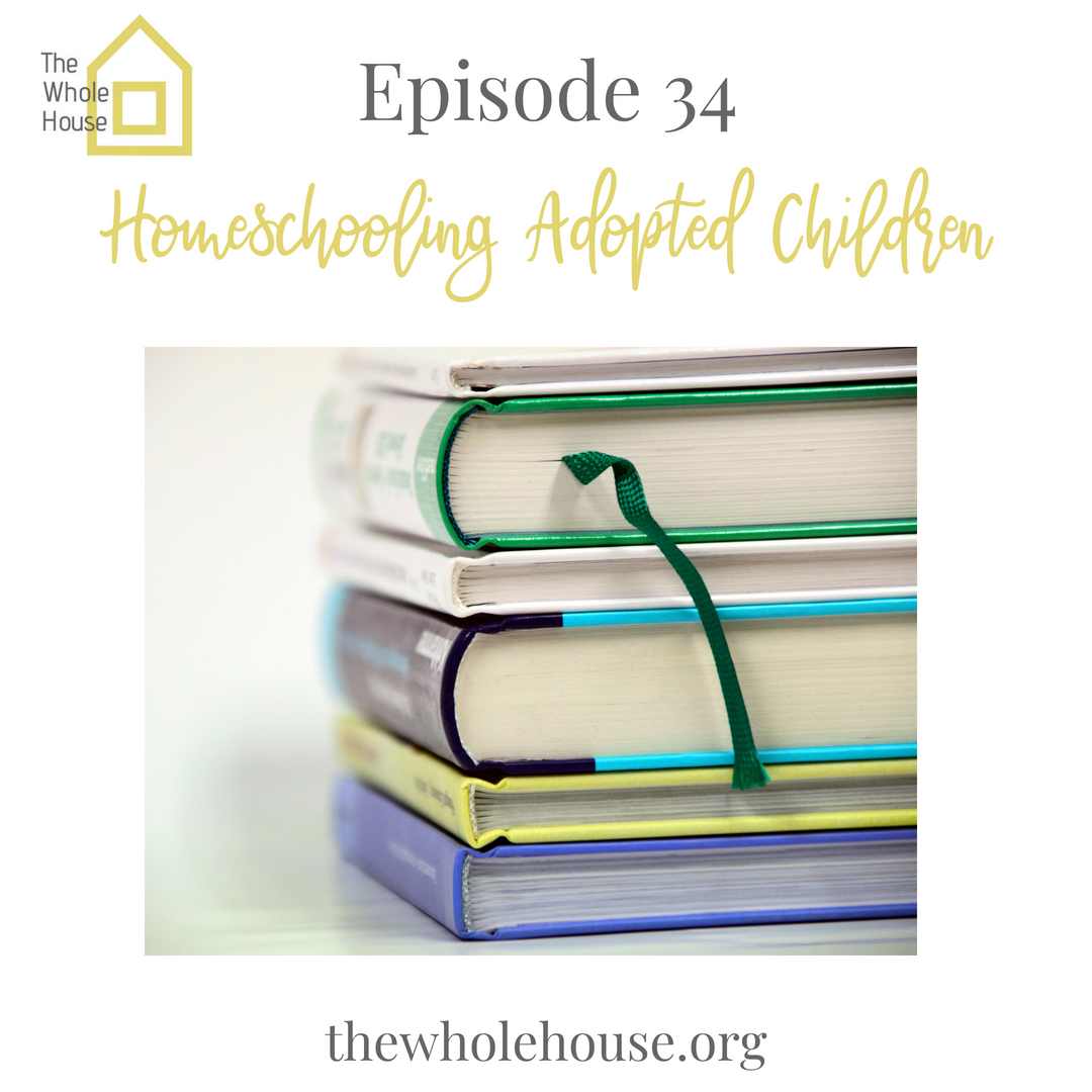 Homeschooling Adopted Children (2)