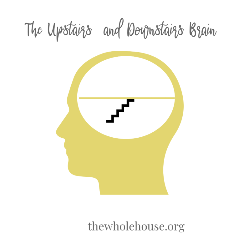 The Upstairs and Downstairs Brain